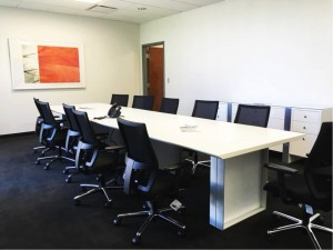 Princeton Consumer Research St Petes Florida - Meeting Room